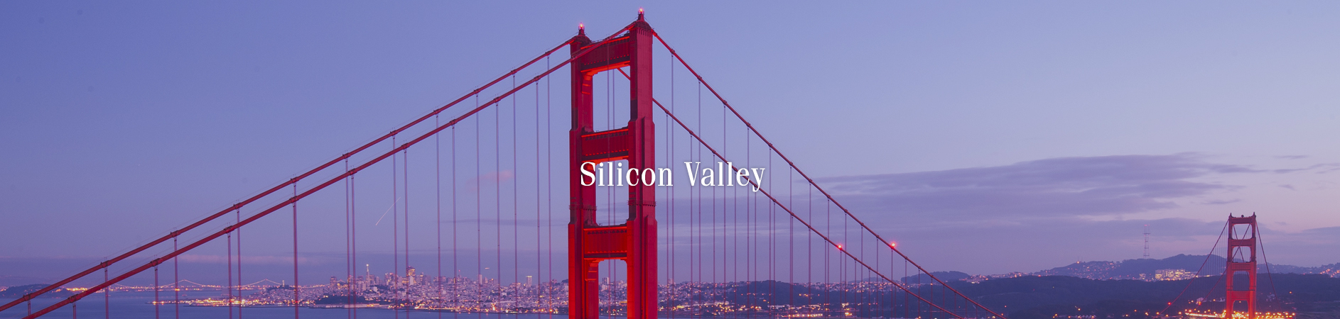 Silicon Valley Investments